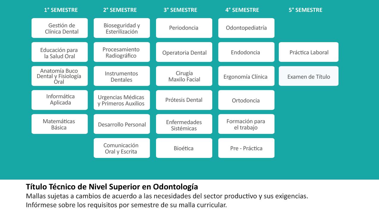 Técnico en Odontología | Grupo Educacional ICEL