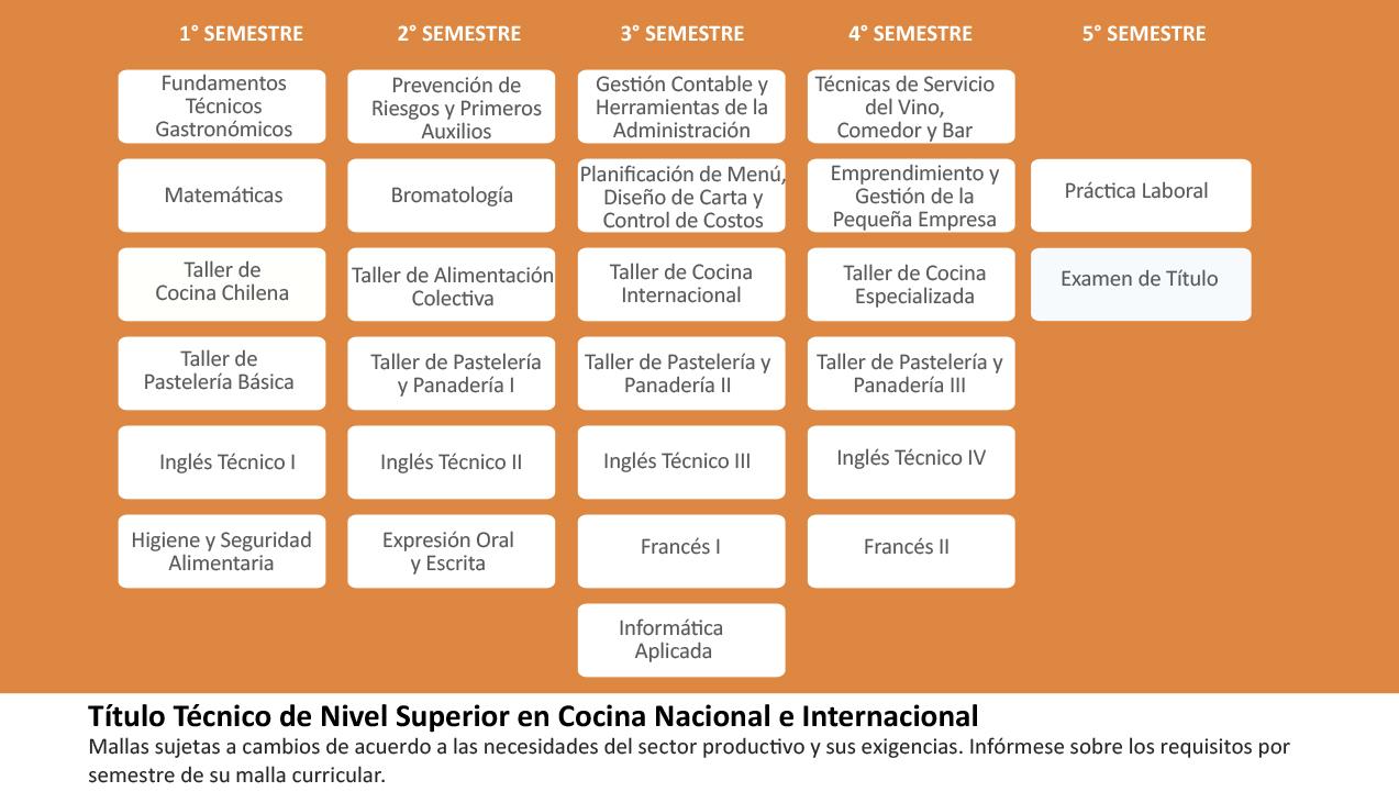 Cocina Nacional e Internacional | Grupo Educacional ICEL